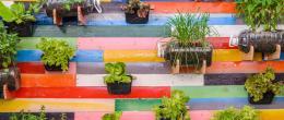 5 ideias para hortas em pequenos espaços